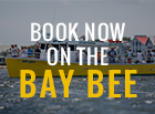 Book Now on the Bay Bee!