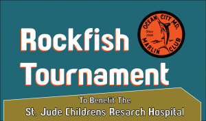 Ocean City Marlin Club Rockfish Tournament To Benefit St. Jude Childrens Research Hospital