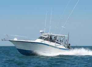 Charters | Ocean City Fishing Center Marina Charter Boats MD